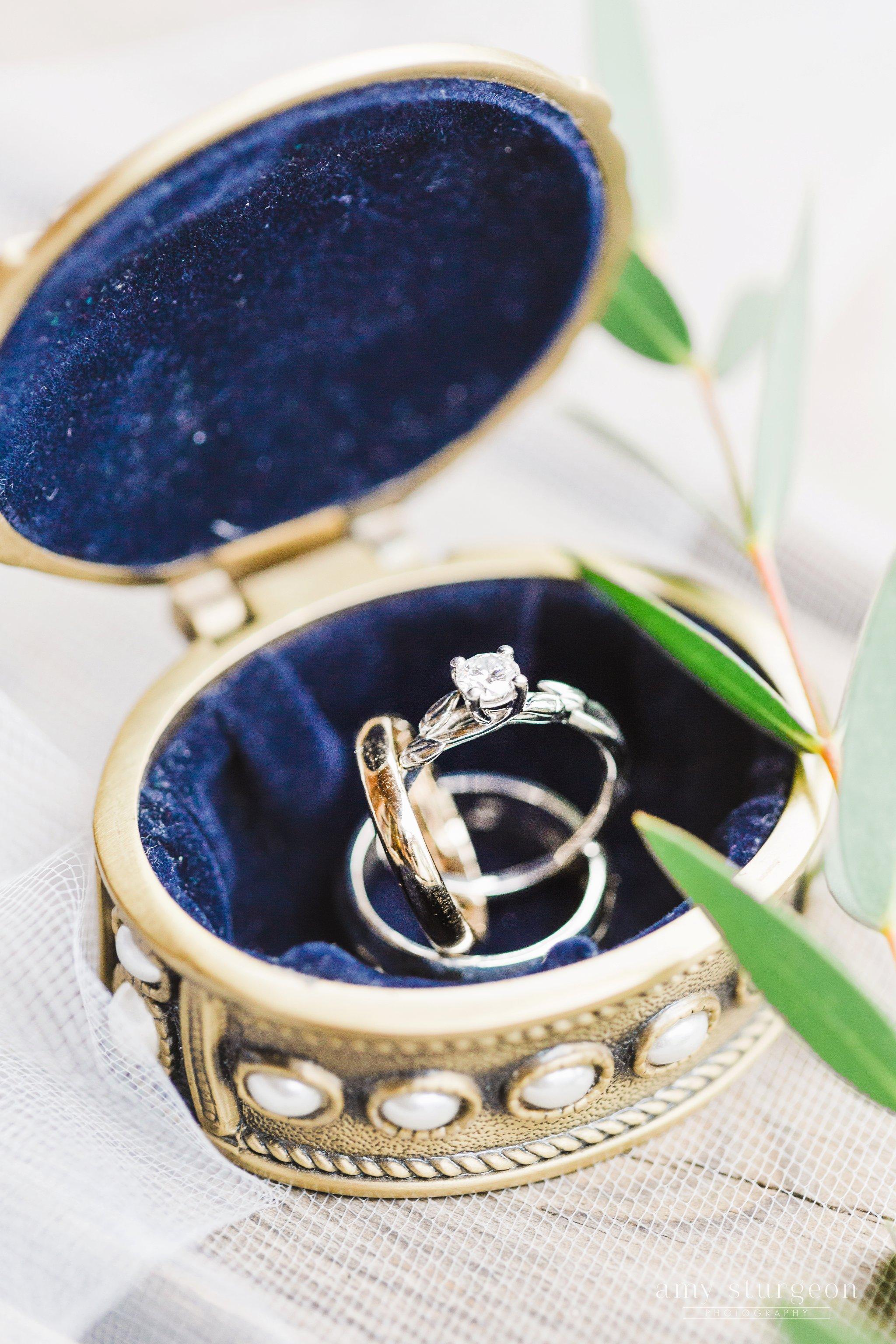 amy-sturgeon-photography_stonefields-wedding_ottawa_1280