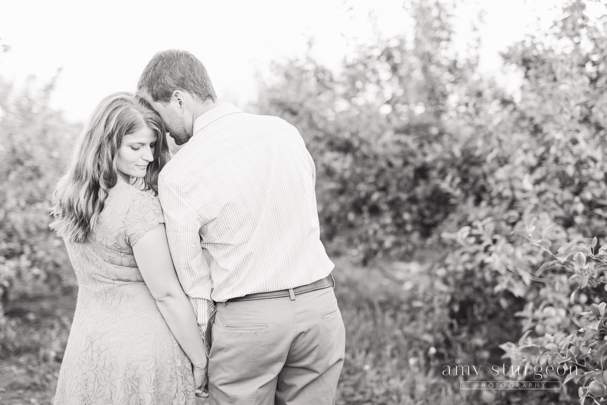 amy-sturgeon-photography_stonefields-wedding_ottawa_1383
