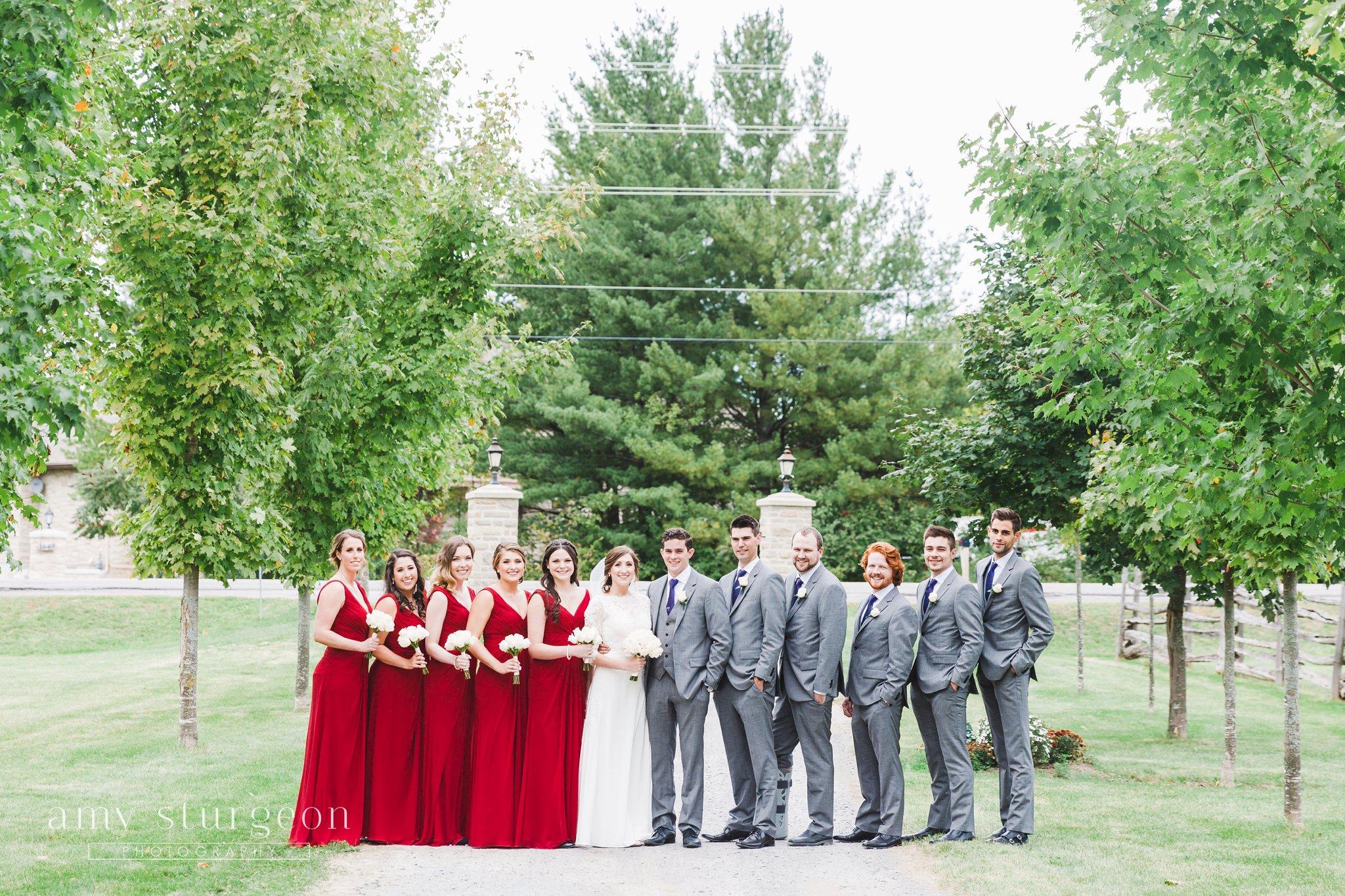 Classic bridal party portrait at the alpaca farm wedding