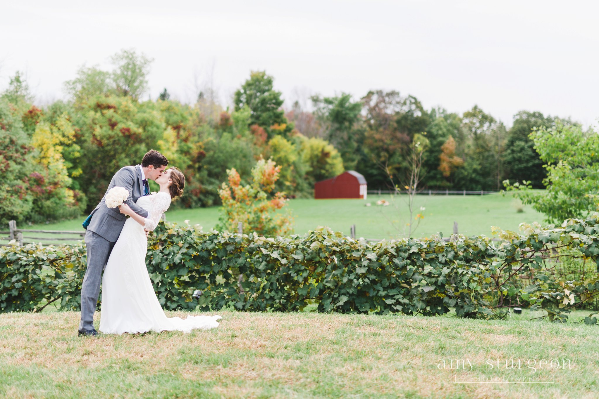 The groom dipped his bride for a kiss at the alpaca farm wedding