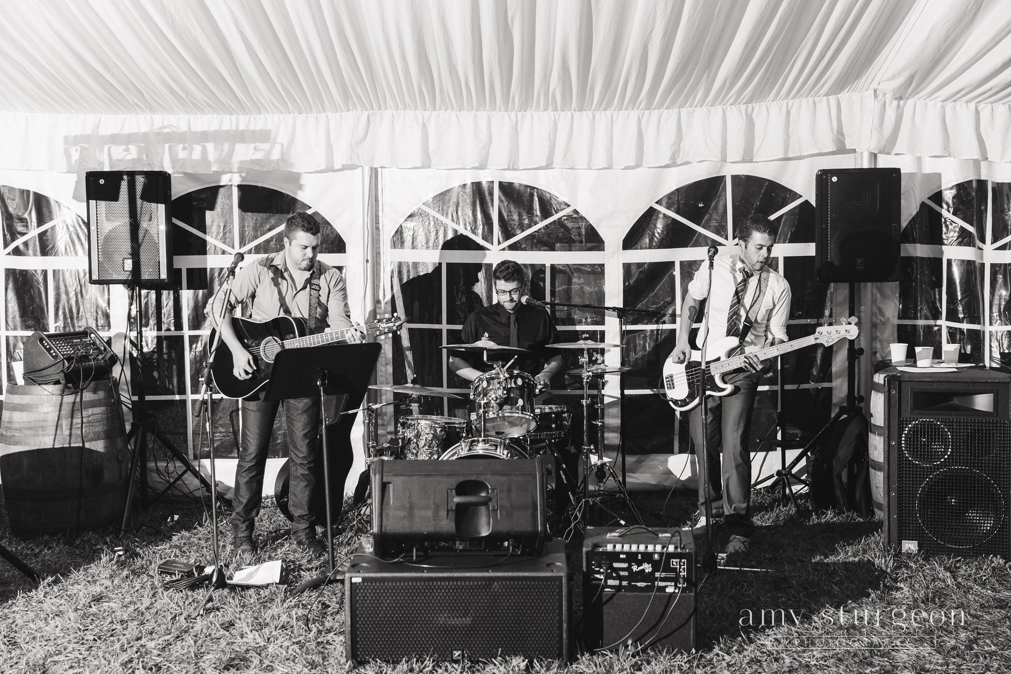 The chris evan band performing live country music at the alpaca farm wedding