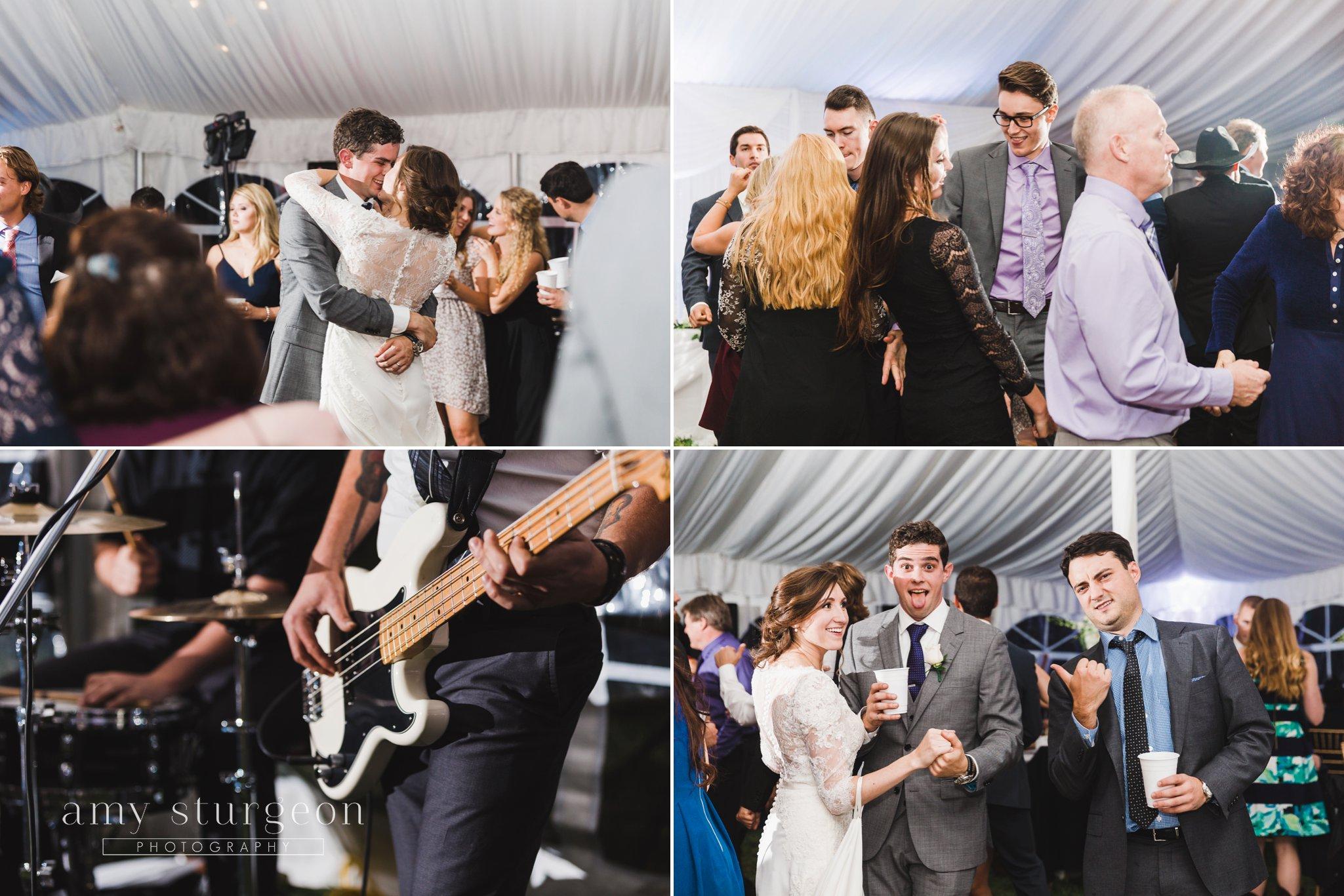 Alpaca Wedding Ottawa