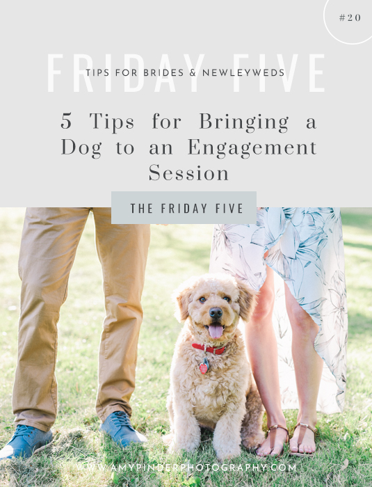 Tips for bringing dog to engagement session - the Friday Five - Amy Pinder Photography