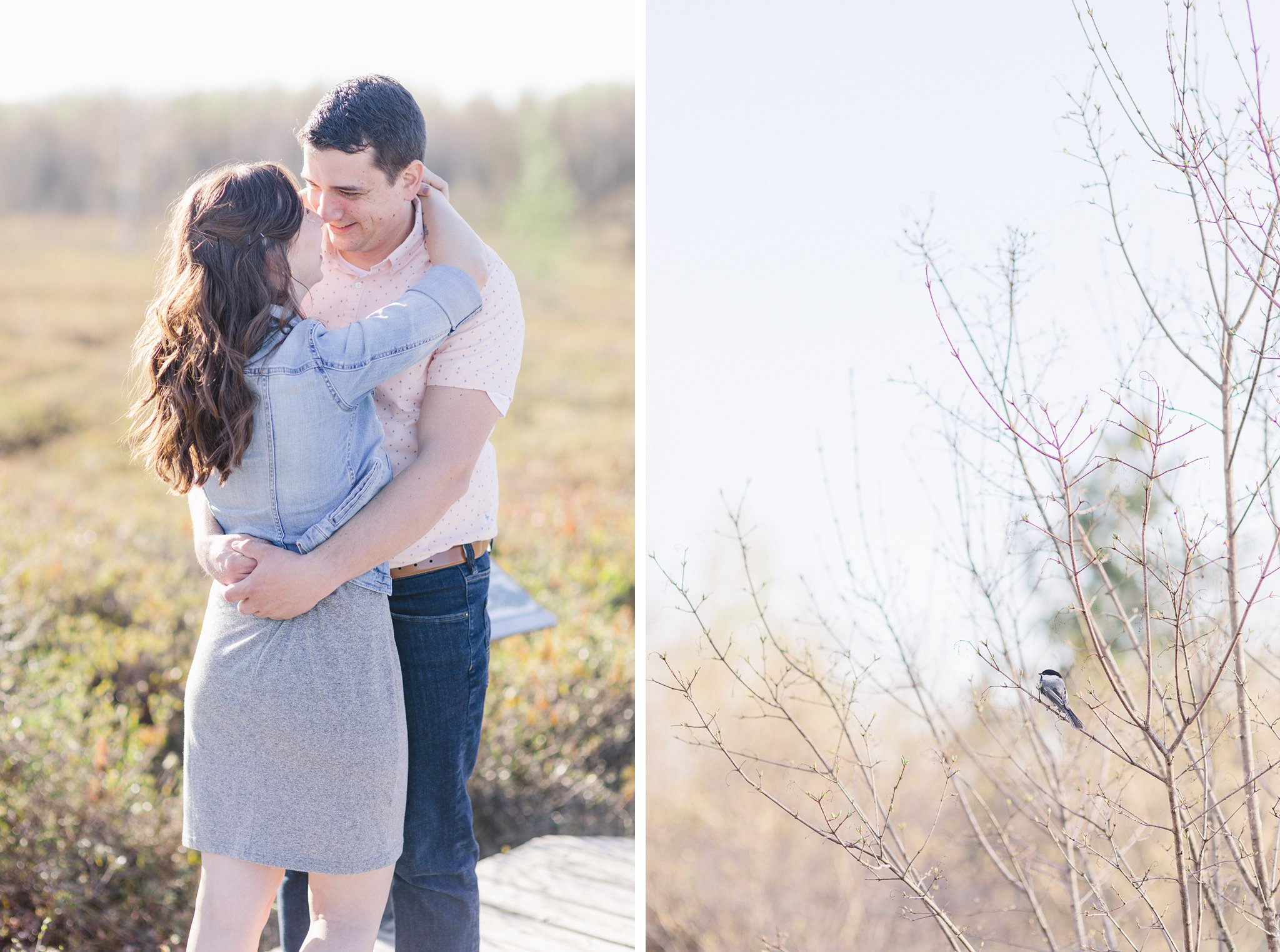 Feeding chickadees Mer Bleue Boardwalk Engagement Photos Amy Pinder Photography