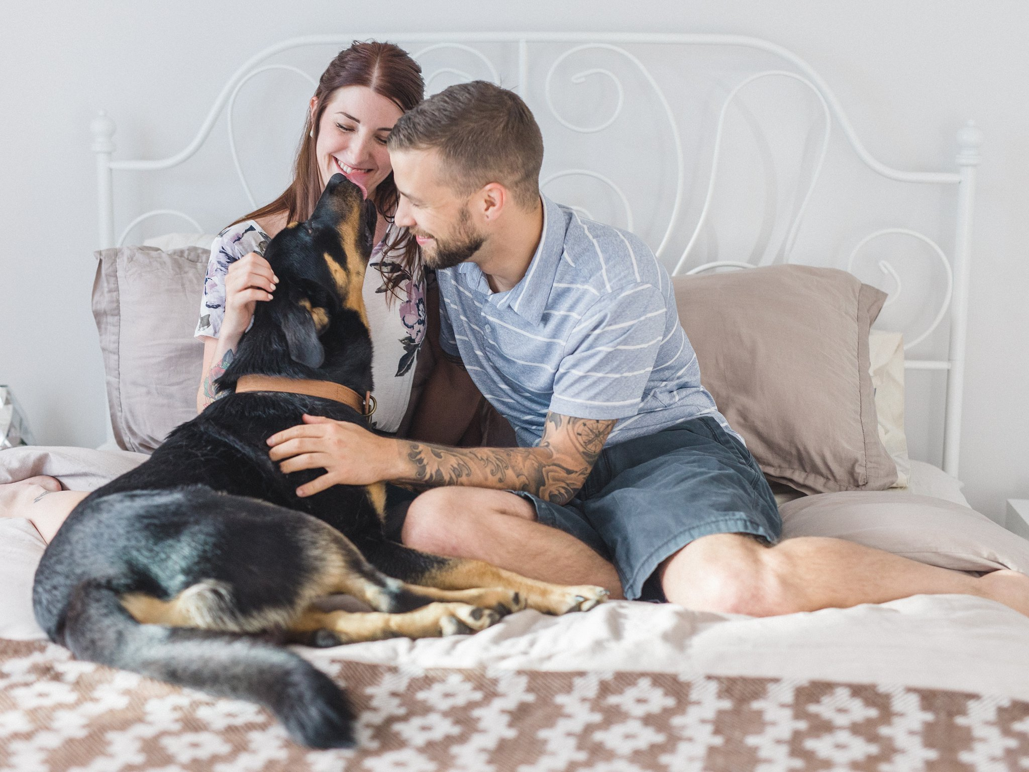 Dog on the bed condo engagement photos Hintonburg Ottawa