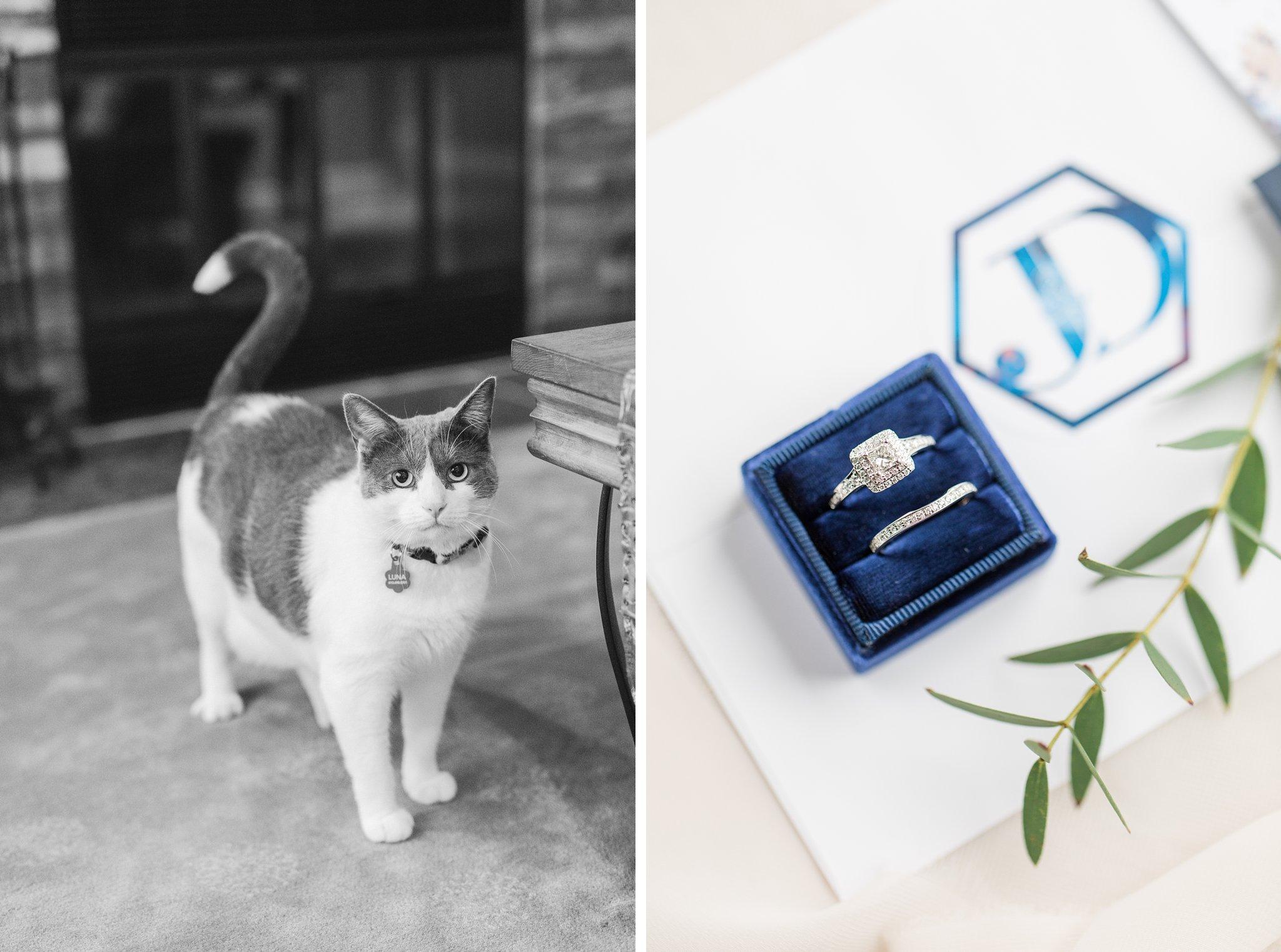 Navy Mrs. box with famiy cat Fall Wedding Photos Ottawa Mill Street Brew Pub