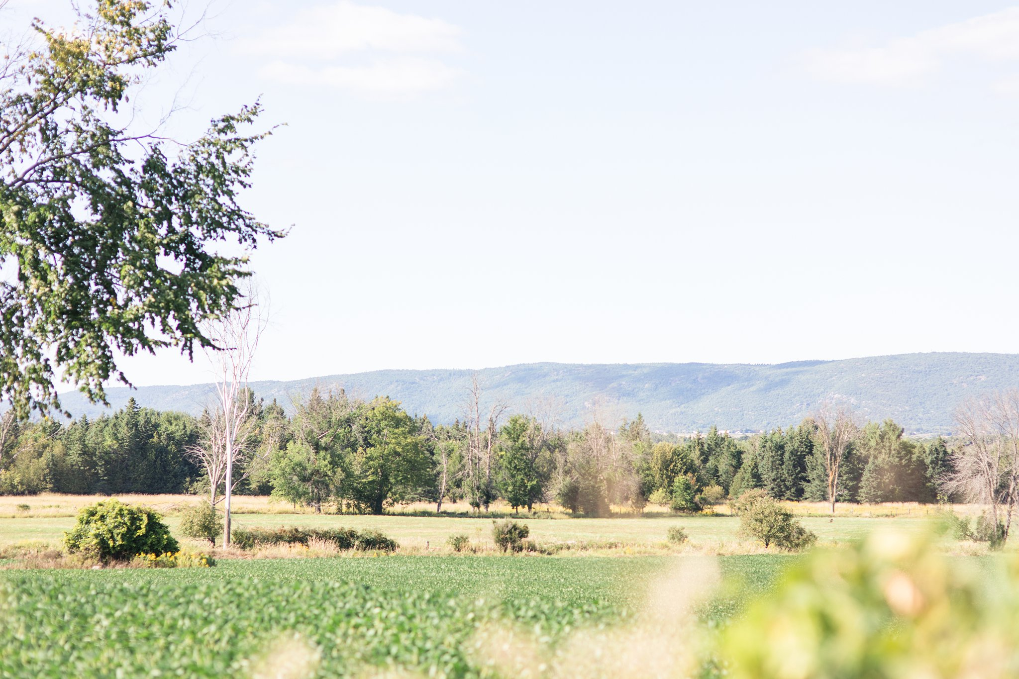 Gatineau Hills, view, wedding, outdoor ceremony, Private Estate Wedding Photos, Amy Pinder Photography