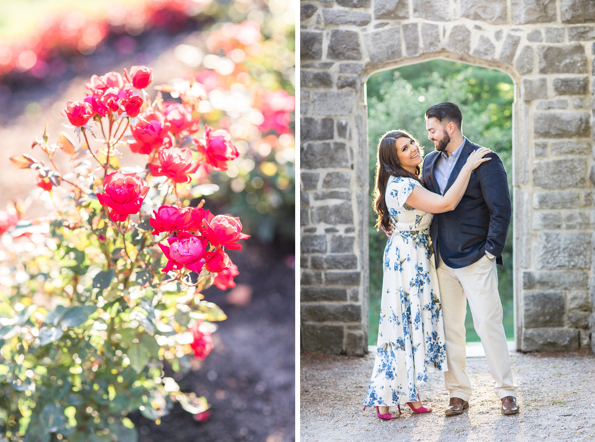 Red roses, English garden, Mackenzie King Estate Engagement Photos by Amy Pinder Photography