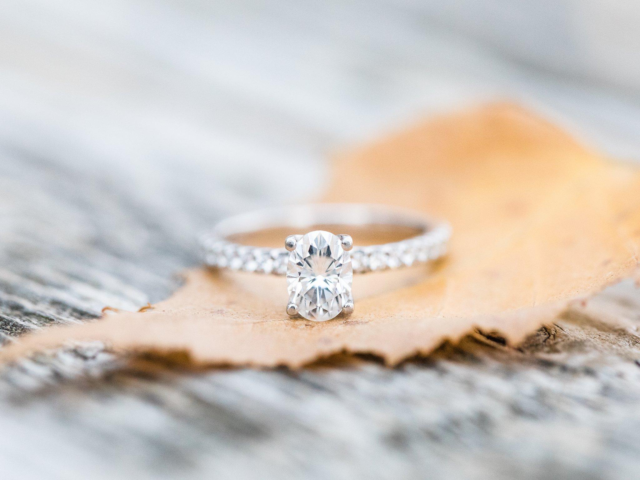 Diamond engagement ring Mer Bleue Boardwalk Engagement Photos